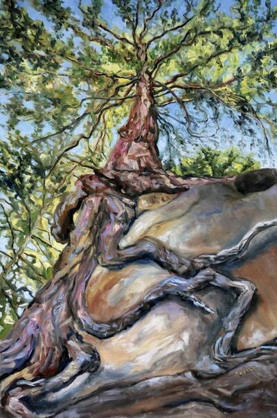 Terrill Welch, 'Standing below the old fir at Tribune Bay', 2019