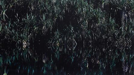 Axel Hütte, 'Yellow Water, Australia', 1999