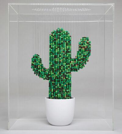 Natasja van der Meer, 'Cactus', 2017