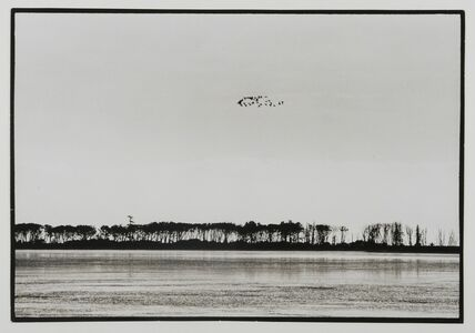 Yoho Tsuda 津田 洋甫, 'Migratory Birds', 1950-1960