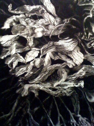 Tyler Vouros, 'Dried Sunflower #5', 2017