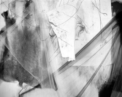 Lauren Semivan, 'Messenger', 2015