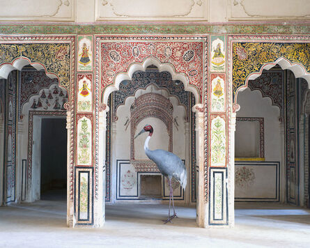 Karen Knorr, 'The Search for Sattva'
