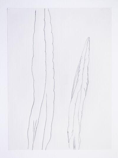 Sergio Prego, 'sin título_10', 2014