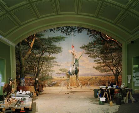 Richard Barnes, 'Giraffe, California Academy of Sciences, SF', 2009