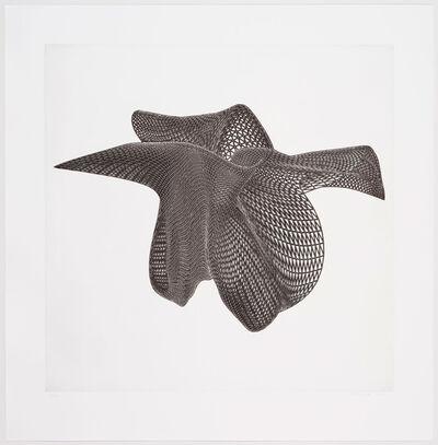 Alyson Shotz, 'Three Views of an Object #2', 2010