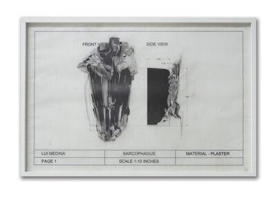 Lui Medina, 'Untitled (Natural History 5)', 2013