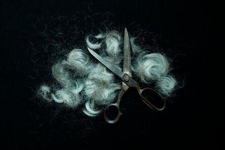 Kim Hak, 'Scissors and Hair - ALIVE series,', 2014