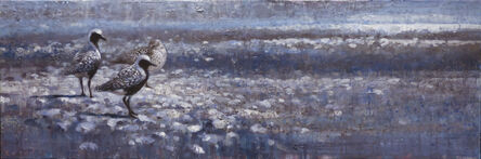 Ewoud De Groot, 'Three Black-Bellied Plovers'
