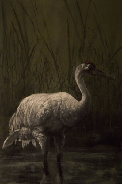 Nikki Vail, 'North American Whooping Crane ', 2016