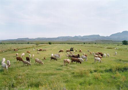 An-My Lê, 'Vaquero Guarding Cattle, El Mulato, Mexico', 2019
