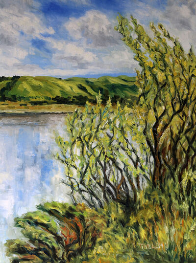 Terrill Welch, 'Willows Early Spring by the Quarry Lakes Fremont California', 2015
