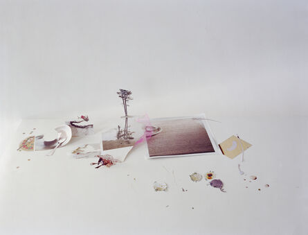 Laura Letinsky, 'Untitled #40, from the series Ill Form & Void Full', 2013