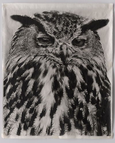 Jean Pagliuso, 'Owl V', 2009