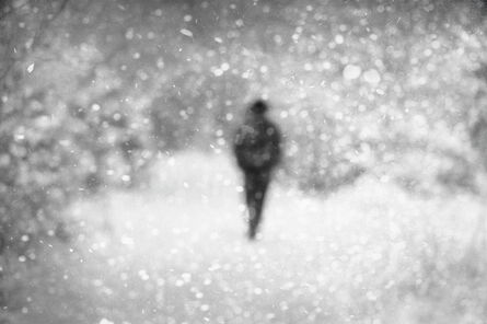 Donata Wenders, 'In the Snow IX', 2010