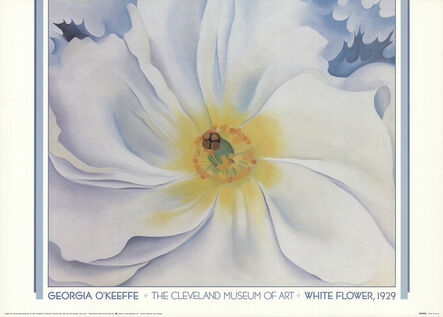 Georgia O'Keeffe, 'White Flower, 1929', 1988