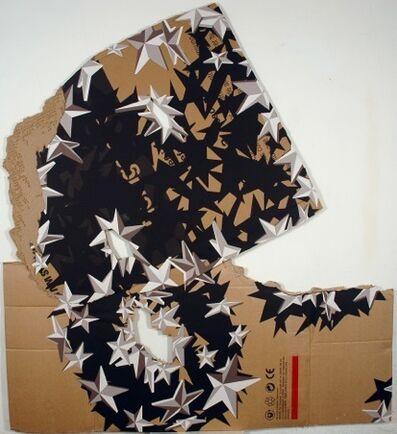 Pablo Vargas Lugo, 'Sombra Estrella 11   Shadow Star 11', 2008