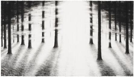 Raquel Maulwurf, 'Into the trees IV', 2016
