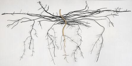 Dalya Luttwak, 'Cannabis Sativa', 2014
