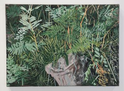Erika Duque, 'Plants along Lake Jenny trail (Grand Tetons)', 2016