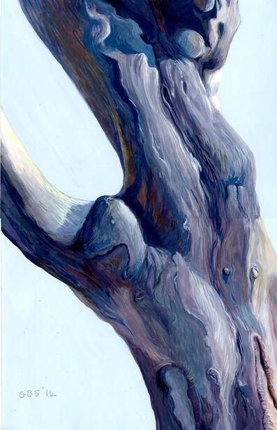 Gillian Bradshaw-Smith, 'Finding Daphne #31 (Knarled)', 2014