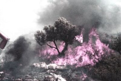 Oded Yedaya, 'Pink Fire', 2009-2012
