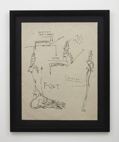 Jean-Michel Basquiat, 'Leg of a Dog, from Da Vinci', 1983