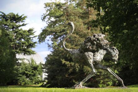 Mark Coreth, 'Galloping Ostrich', 2016