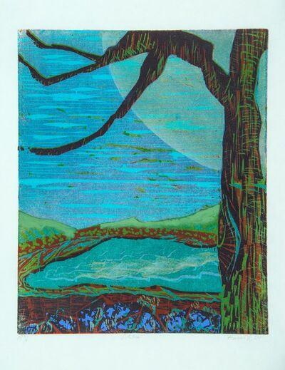Gregory Amenoff, 'The Seasons #6 Solstice', 2004