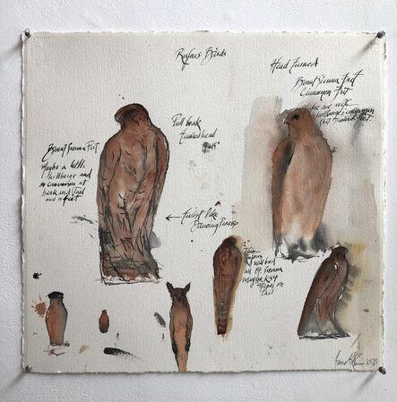 Jane Rosen, 'Rufous Birds', 2020
