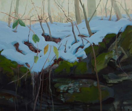 Kristin Musgnug, 'Forest Floor with Melting Snow', 2016