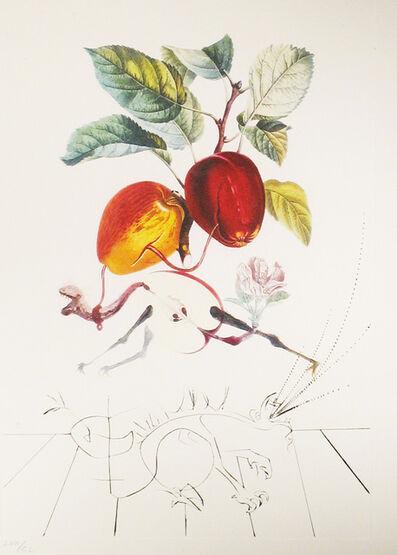 Salvador Dalí, 'Apple-Eve's Apple', 1969