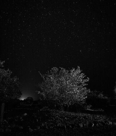Fran Martí, 'Panta Rey. Noche', 2014