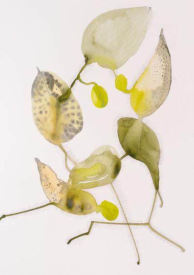 Kristina Okan, ''My Secret Garden' Series 2 ', 2020