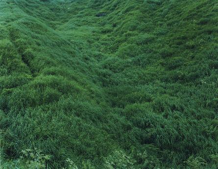 Rinko Kawauchi, 'Untitled, from the series Ametsuchi', 2013
