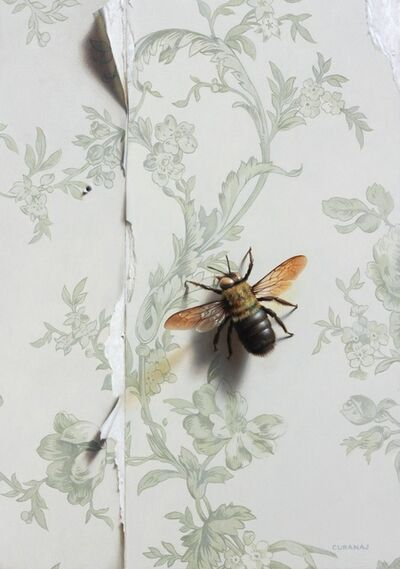 Tony Curanaj, 'Pollinator', 2014