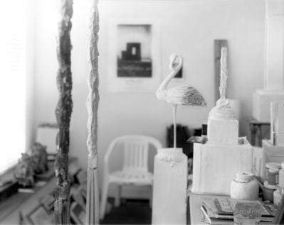 Sally Mann, 'Remembered Light, Untitled (Flamingo Profile)', 2012