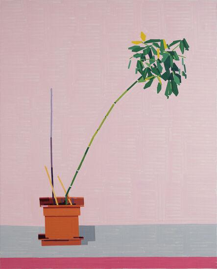 Guy Yanai, 'Plant in German Office I', 2020