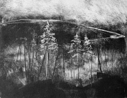 Laura Avello, 'Pine Trees on the Mountain', 2019