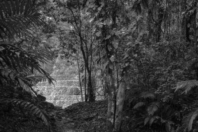 William Frej, 'Yaxchilan, Chiapas, Mexico', 2017