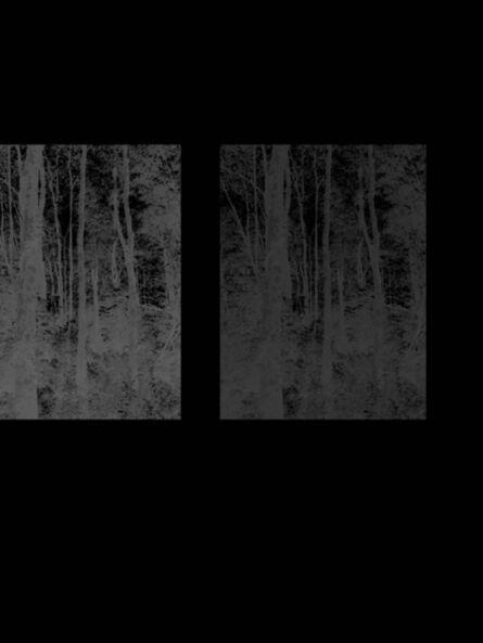 Cameron Martin, 'Inverses 2', 2012