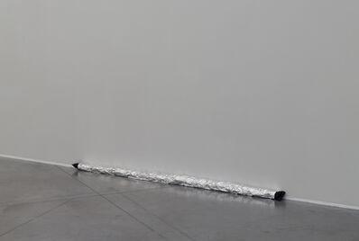 Aiden Morse, 'Protective Door Snake', 2016