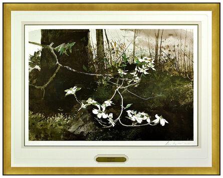 Andrew Wyeth, 'Dogwood', 1983