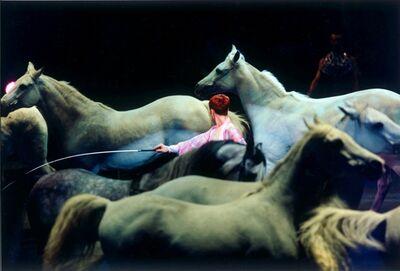 """Lauren Klain Carton, '""""Sea of Horses""""', 2010-2017"""