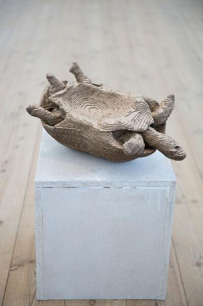 Martin Erik Andersen, 'Testudo Tabulata/Pyx', 2015
