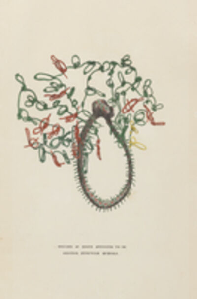 Augustine Aglio after John Flaxman, 'Specimen of knots supposed to be original Peruvian Quipoes', 1830