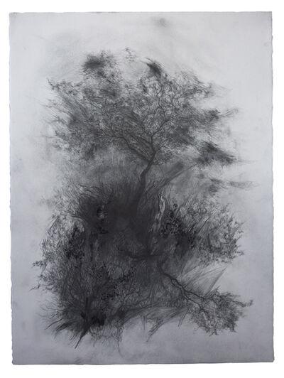 Joris Vanpoucke, 'Appearance', 2018