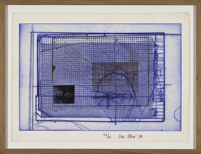 Dieter Roth, 'Brauner Käfig in blauem (Brown Cage in Blue Cage)'