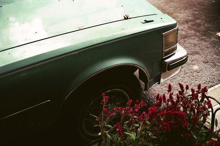 Lala Serrano, 'Cadillac and Red Flowers/NY', 2017