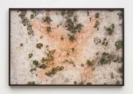Brie Ruais, 'Three Seasons Passed', 2020